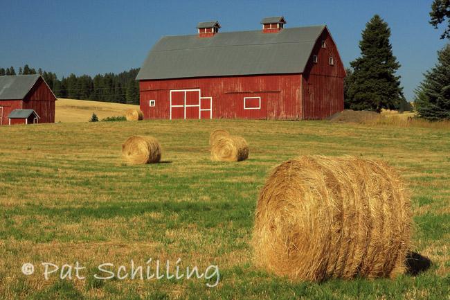 Bales and Barn